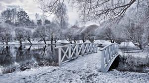 Frozen Park