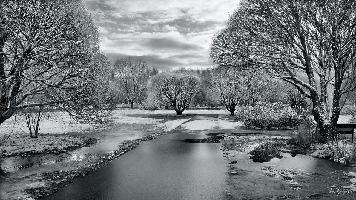 Frozen Park II by Pajunen