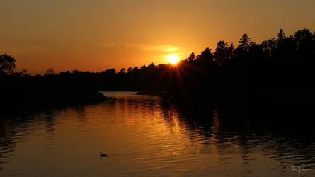 Golden Sunset by Pajunen