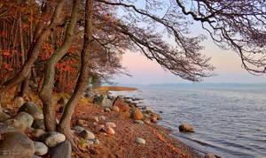 October Seashore by Pajunen
