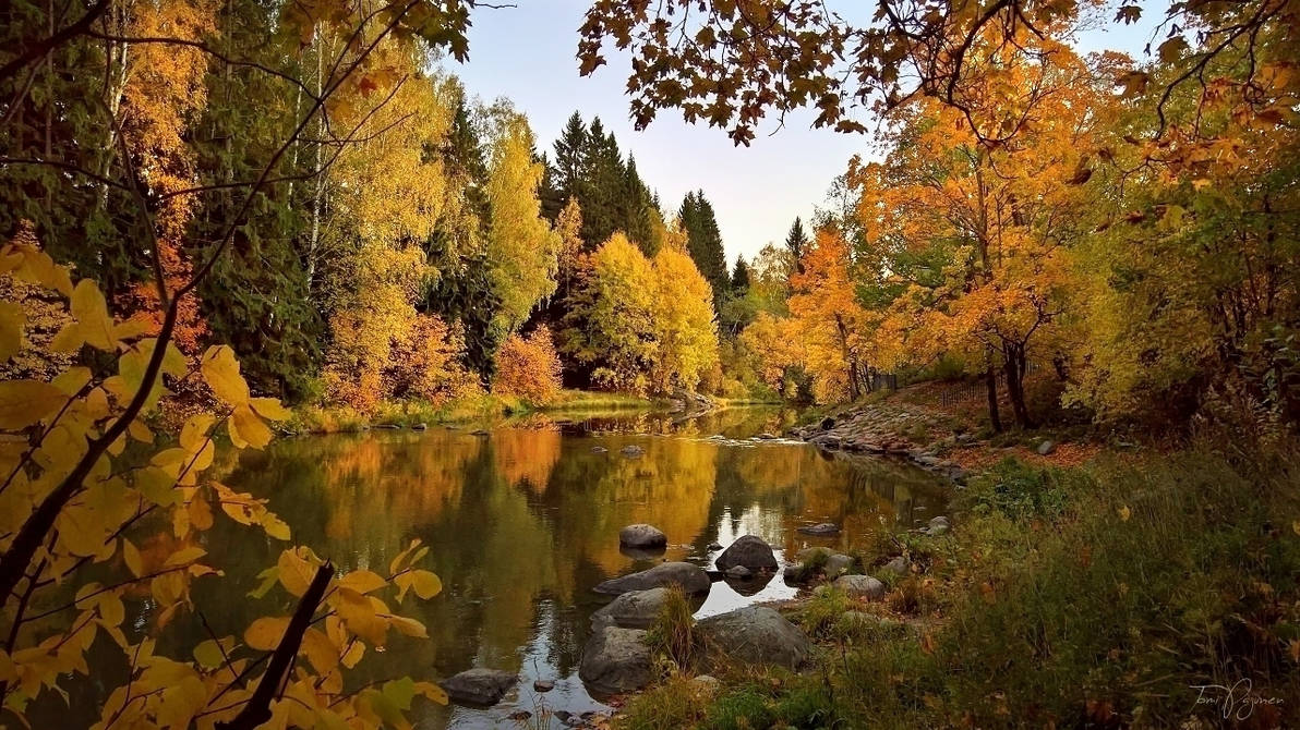 October River II by Pajunen