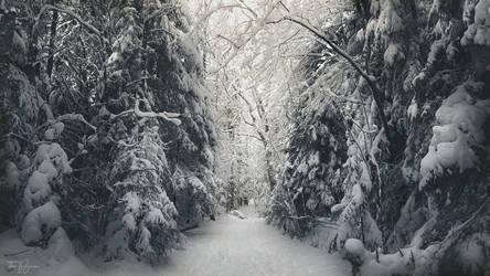 Luminen Taival