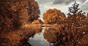 Autumn Park by Pajunen