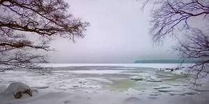 Winter Seashore