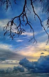 Black Lightning by Pajunen