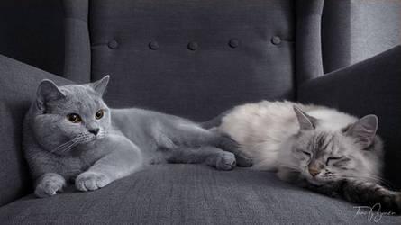 Aino and Maisa