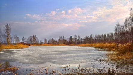 Frozen Lagoon by Pajunen