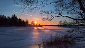 Frozen Seashore