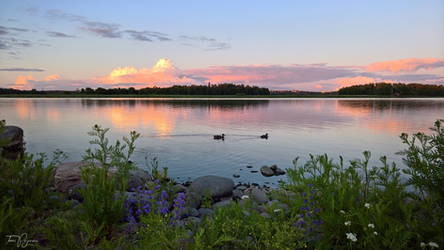 July Evening by Pajunen