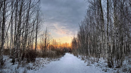 Winter Solitude by Pajunen