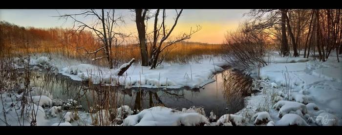 A small creek in winter