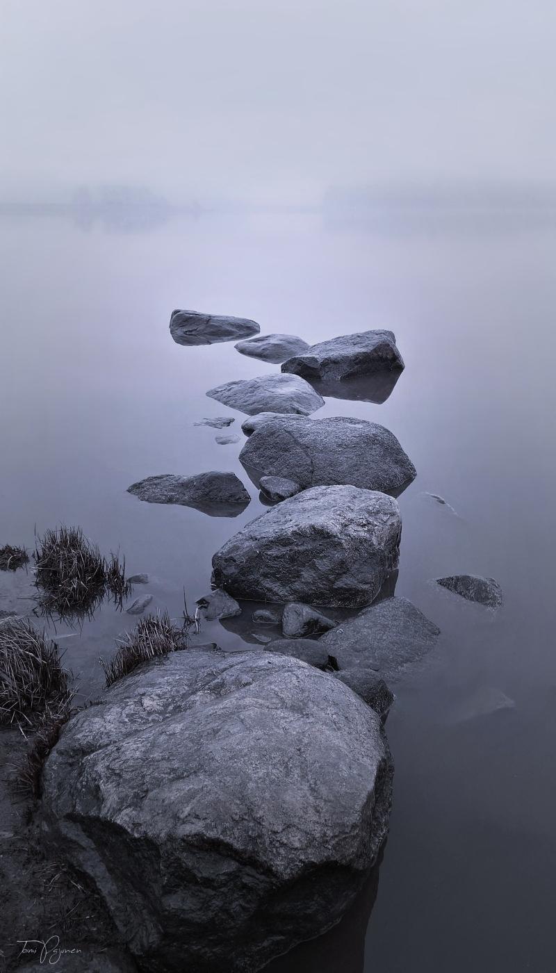 Foggy Seashore