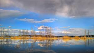 Spring Lagoon