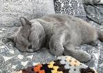 Sleeping Aino