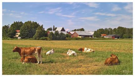 Rural Helsinki