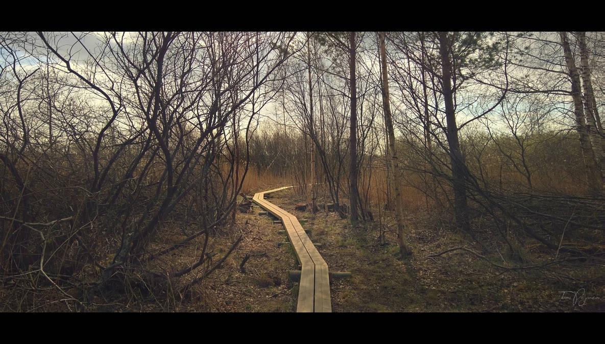 Path to Fall