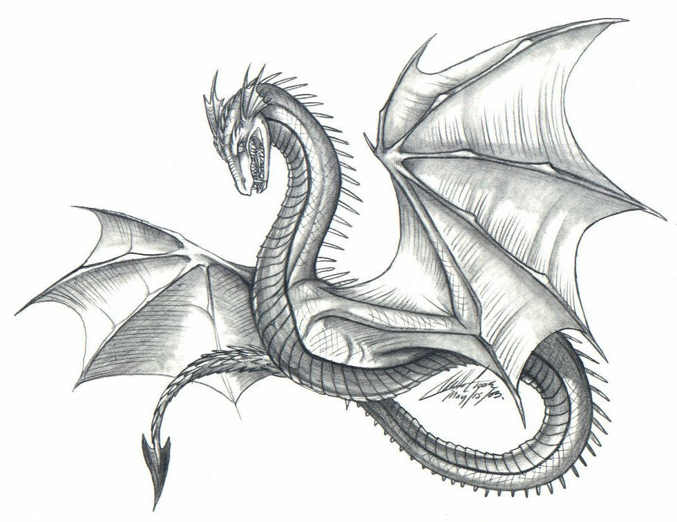 Dragon Scribble Drawing : Old style dragon by psycrowe on deviantart