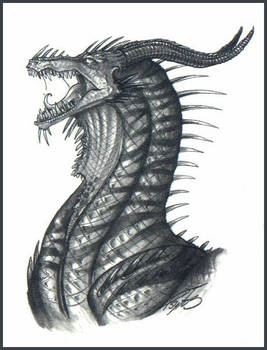 Black Dragon -- Tiger Striped