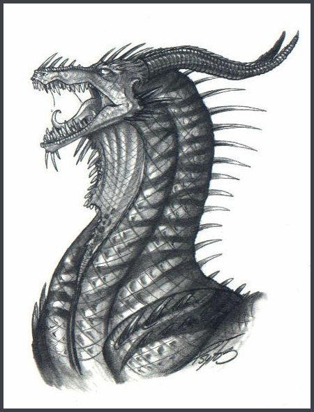 Black Dragon -- Tiger Striped by psycrowe