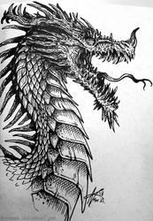 It's a Dragon!