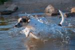 Flipping through the water by Usagi-Atemu-Tom