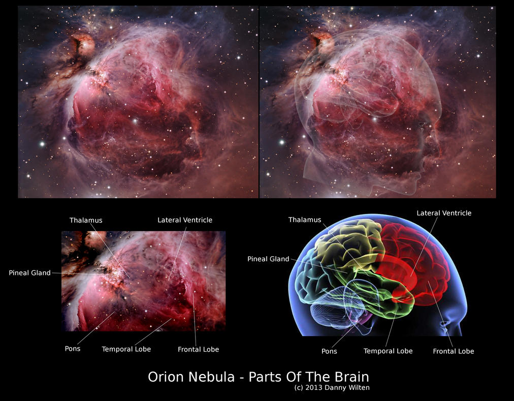 orion nebula and human brain-#main
