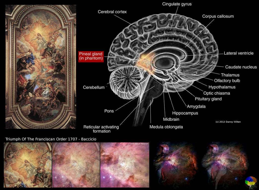 orion nebula and human brain-#17