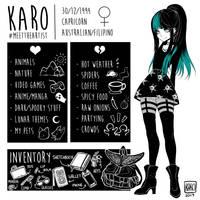 Meet The Artist 2017 by Karousel-k