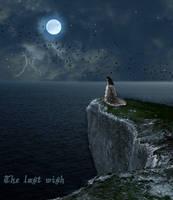 The last wish by laralynn