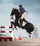 ROEMOE BEACH SEASIDE SHOW JUMPING by dat-inu