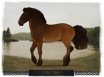 21899 Tamar by dat-inu