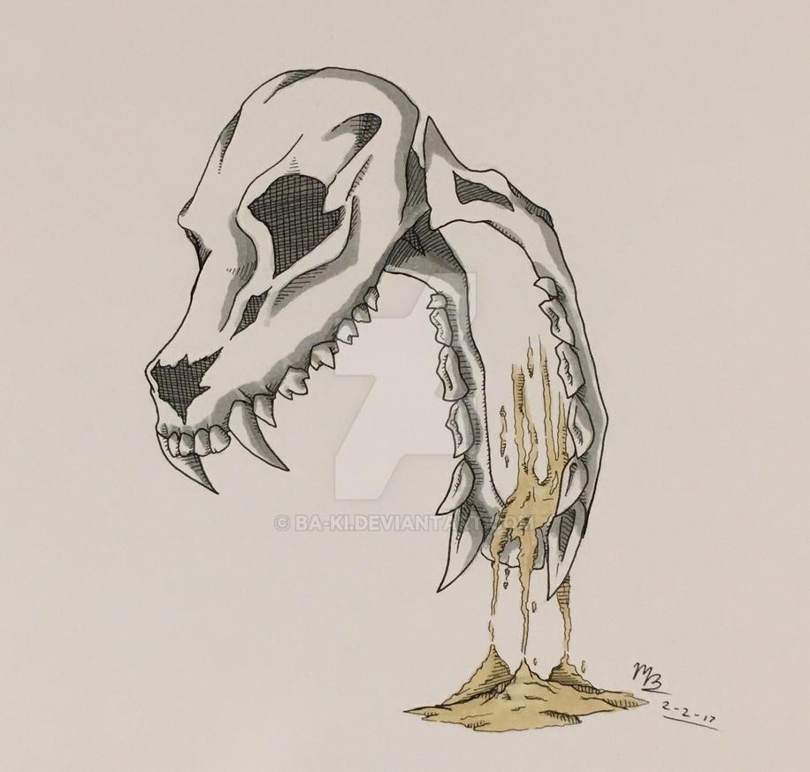 Dog skull by Ba-Ki
