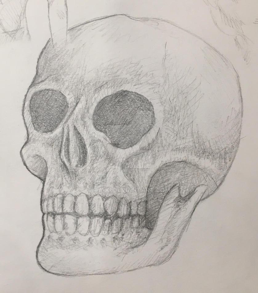 Skull by Ba-Ki