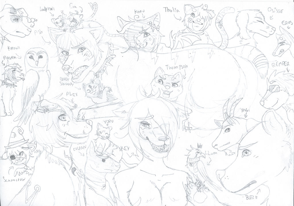 [sketch] All my animals OCs by RavenThalia