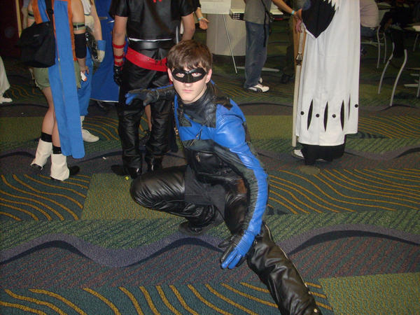 Another Nightwing by Sakujo-Kun