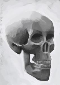 kjellio's Profile Picture