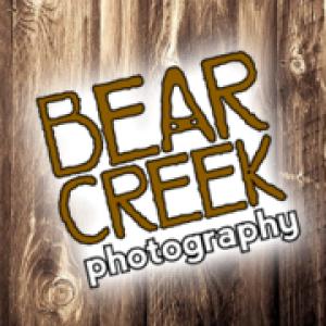 bearcreekstudio's Profile Picture
