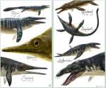 Mesozoic sea beasts