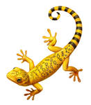 Beeline Lizards by EldarZakirov