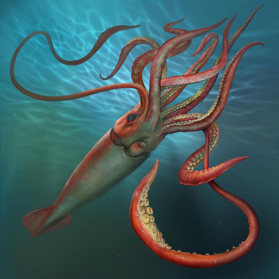 7 Gigantic Squid Info designed for Kids