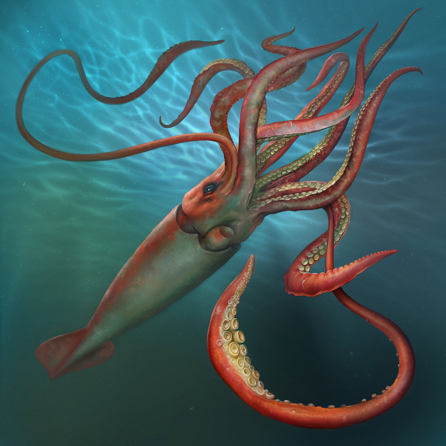 Giant Squid by EldarZakirov on DeviantArt