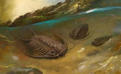 Trilobits
