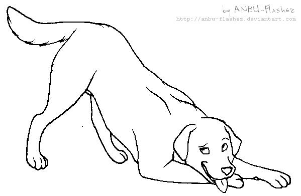 lineart labrador retriever by anbu flashez on deviantart