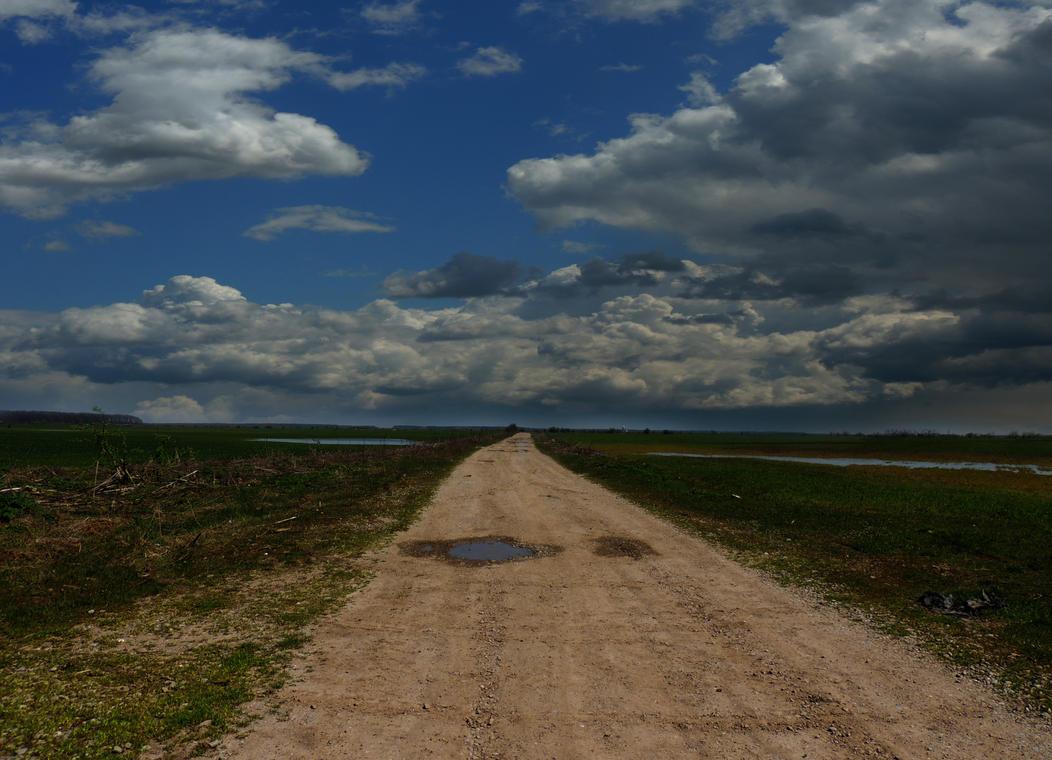 Road by Adeleene