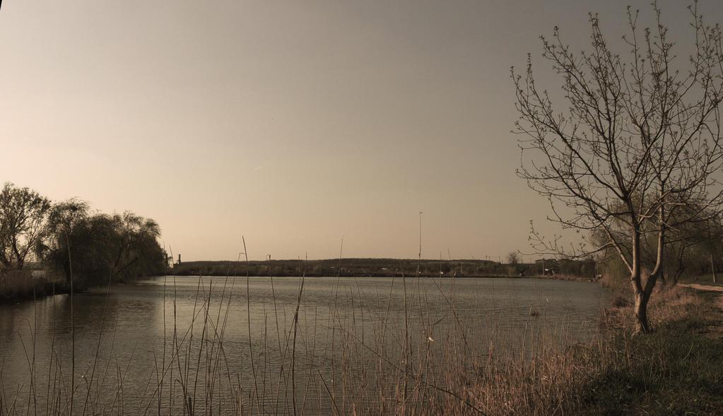 The lake by Adeleene