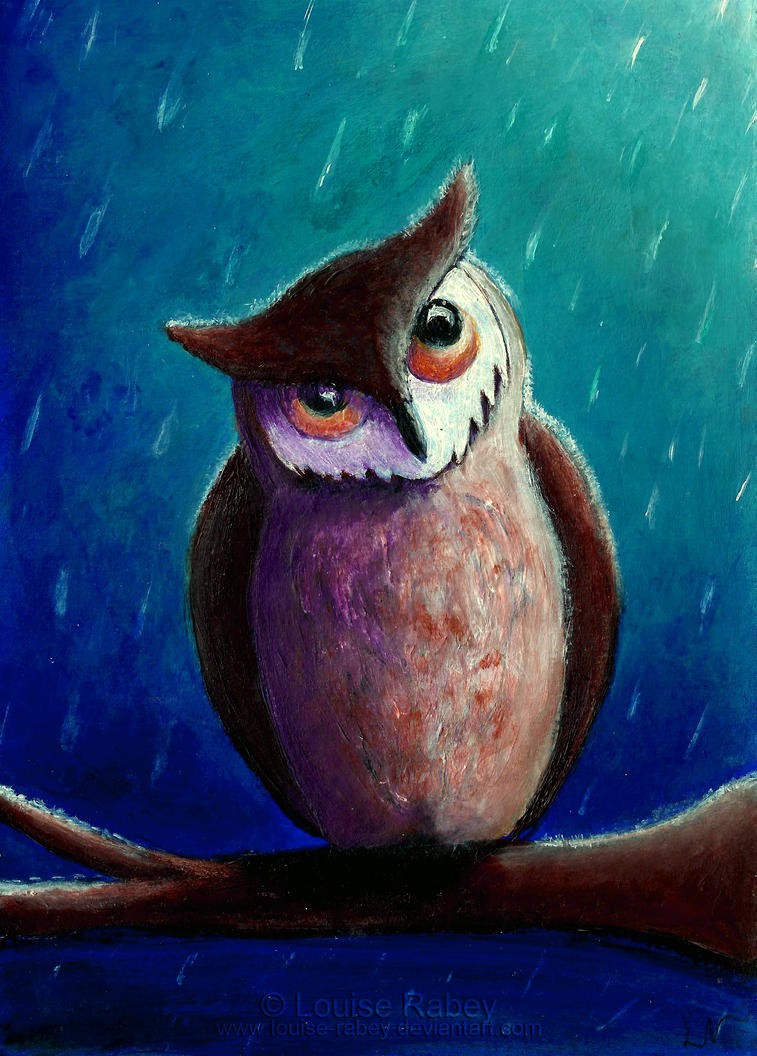Owl in the rain by louise-rabey