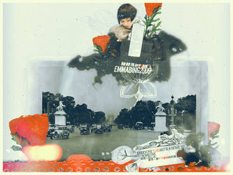 Paris by Mr-raindrop-Emmabing