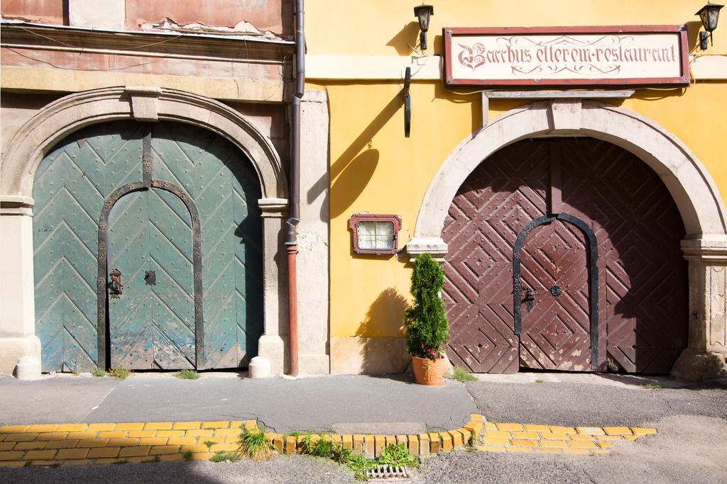 Doors of Sopron by olgaFI