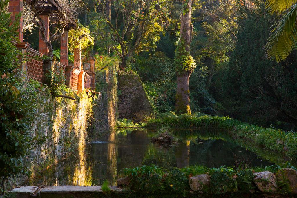 Park in Sintra by olgaFI
