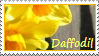 daffodil by thebluemaiden